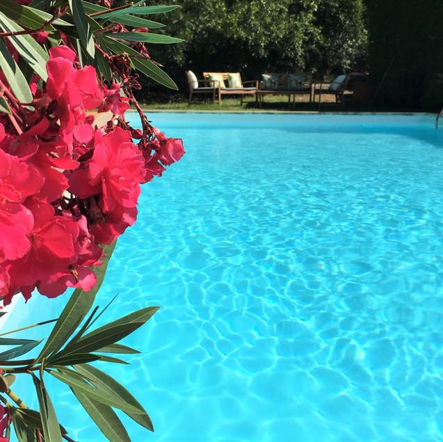 Swimming pool Villa Fontane