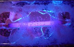 'Idea Box Blue' 2002
