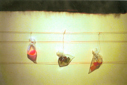 Aspex Gallery 2001