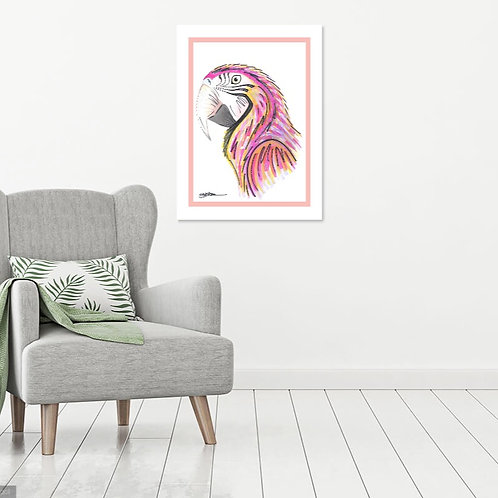 Macaw (2 Variations)