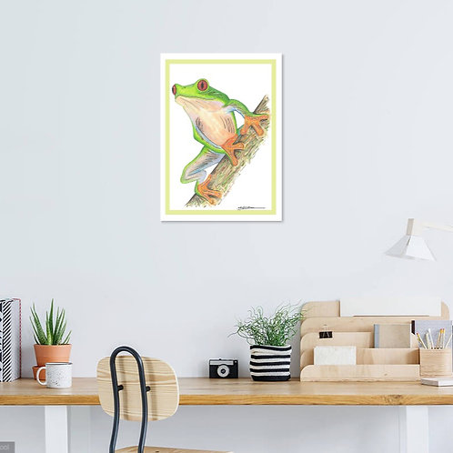 Red Eyed Tree Frog (2 Variations)