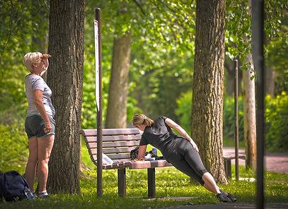 BenchFit, pour exercices de flexibilité et renforcement des muscles et du tronc.