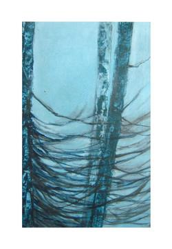 arbres fond bleu