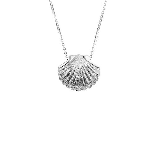 Ocean Scallop Necklace - 4N60009