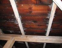 横浜 屋根裏 雨漏り修理