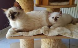Zaira avec son bébé Oasis