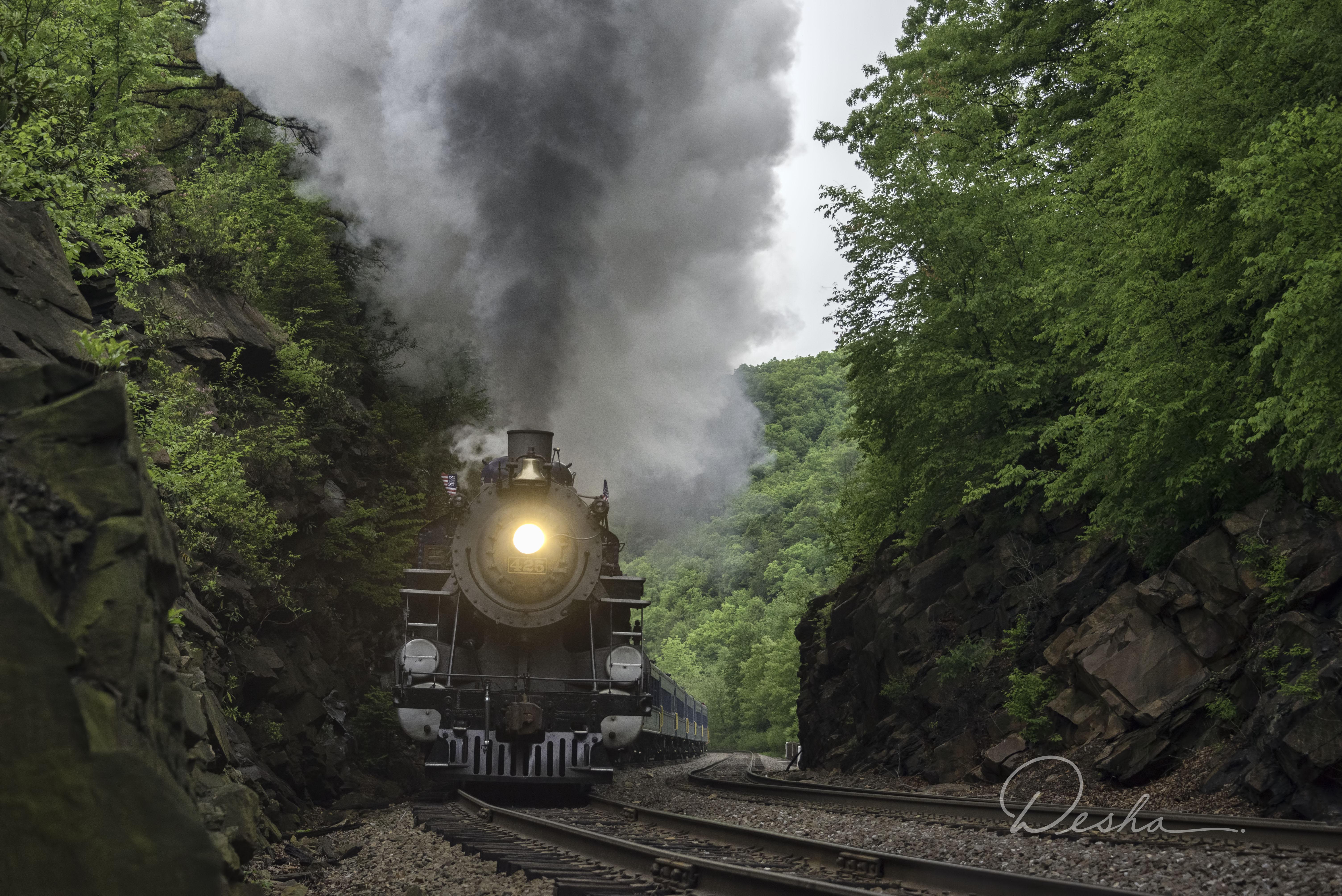 Train through Lehigh Gorge