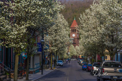 Downtown JT, Spring