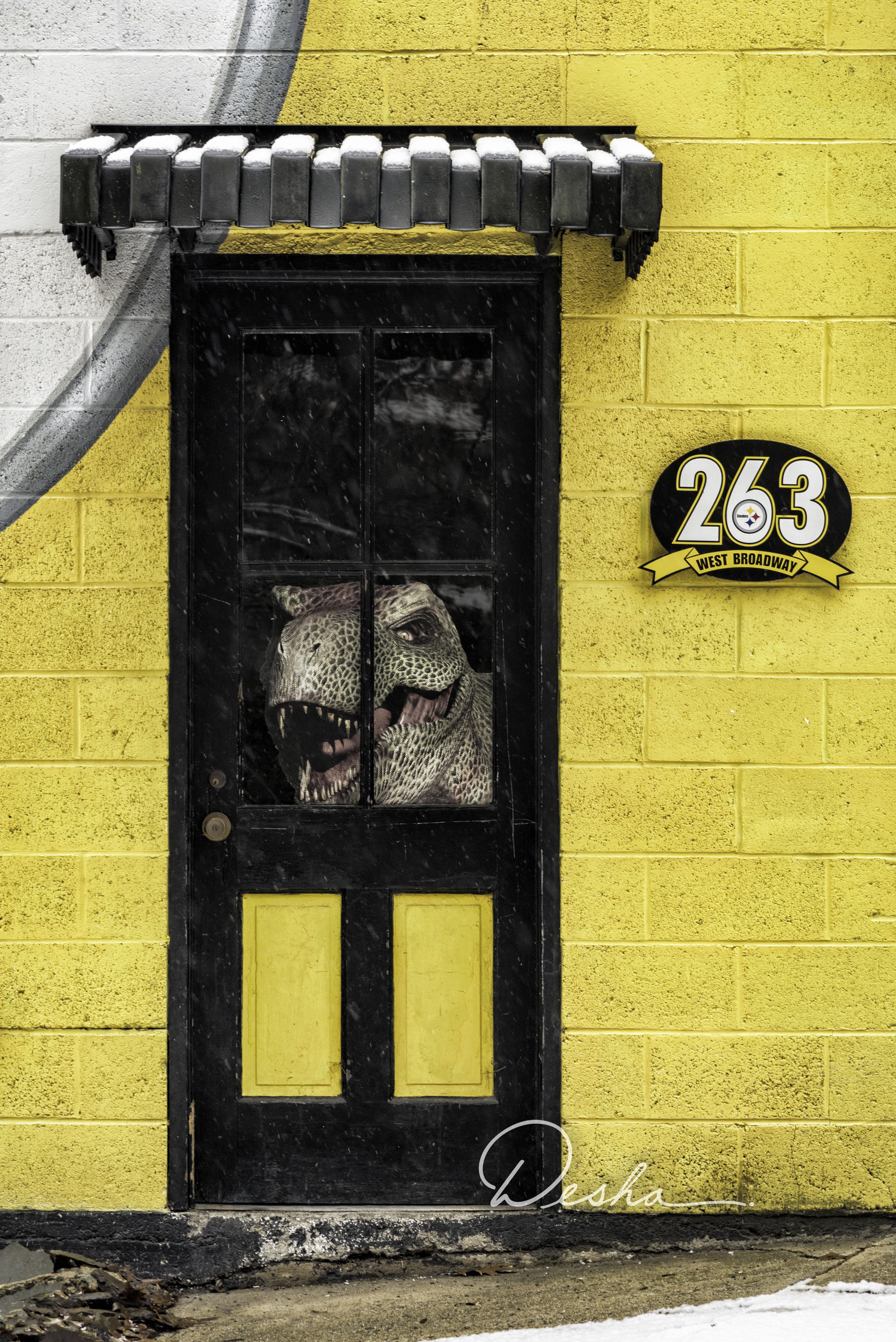 Doug's Door, Jim Thorpe, PA