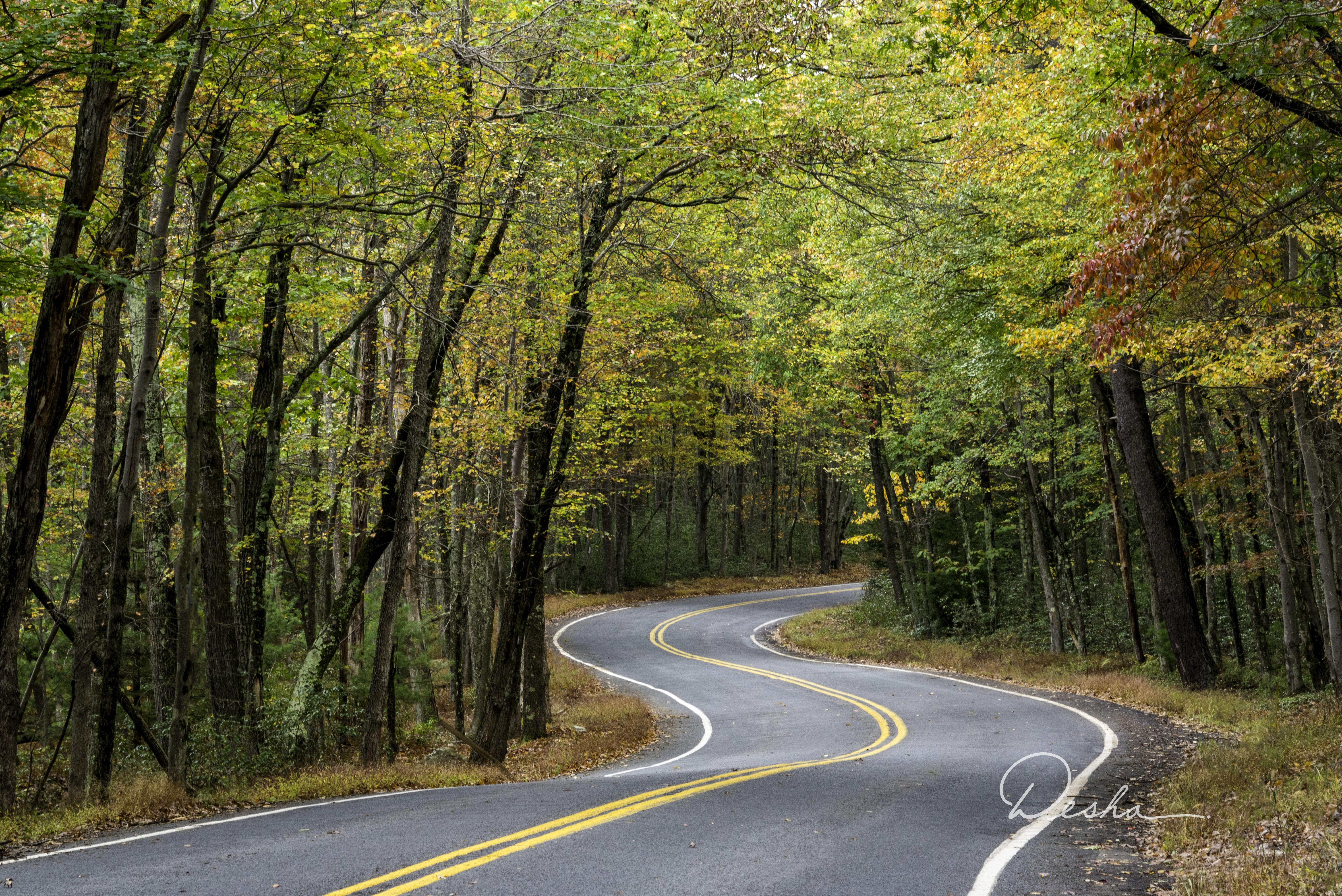 Hickory Run Road