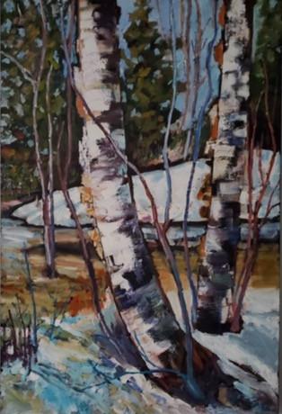 Swamp Birch