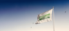 green_flag_intro.png