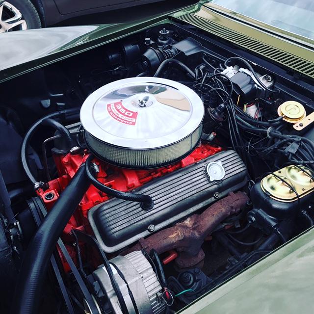 Motor Steam Cleaned