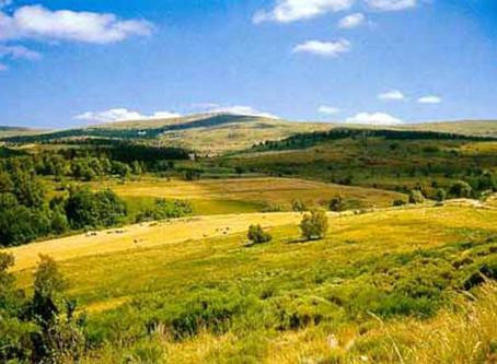 Du 17 au 21 Mai 2021: Des Monts Aubrac au Mont Lozère