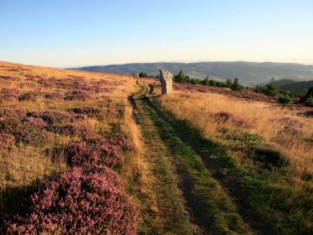 Weekend Pentecôte : Du Mont Lozère à la Margeride