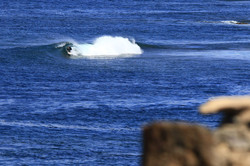 Surf coach fuerteventura Trystan Mullins