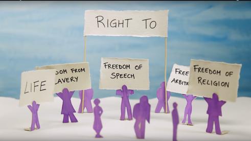 """""""Rightsinfo"""" screenshot"""