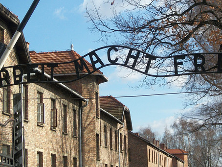 Who has said what on Holocaust Memorial Day 2015?