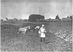 L. N. Tolstoy. Iasnaia Poliana, 1908