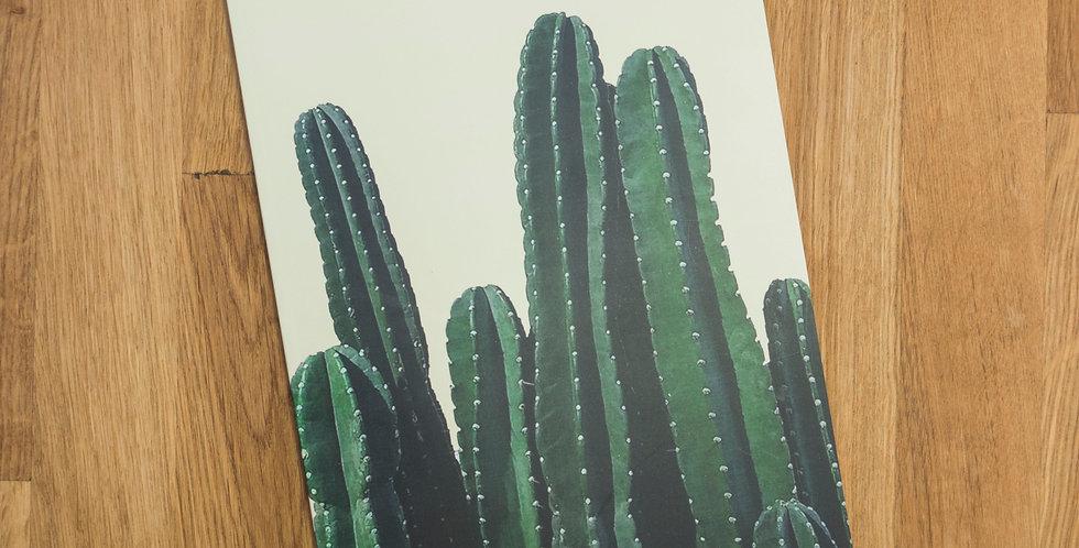 Cactus - A5 Notebook