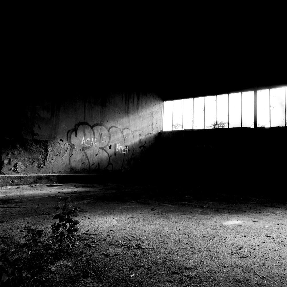 Reininghaus (2)
