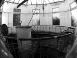 Reininghaus (8)