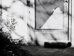 Reininghaus (6)