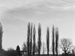 Reininghaus (1)