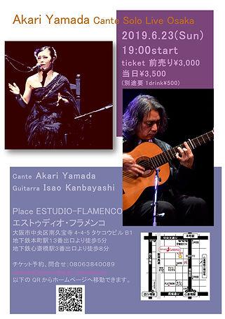 akari cante solo live 2019.jpg