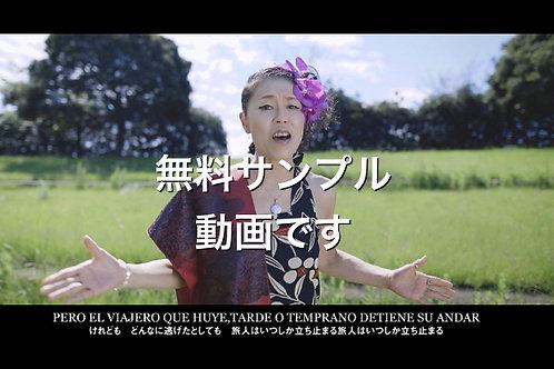 無料サンプル動画(Volver)
