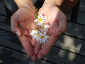 Giving Series Part 4: Endowments