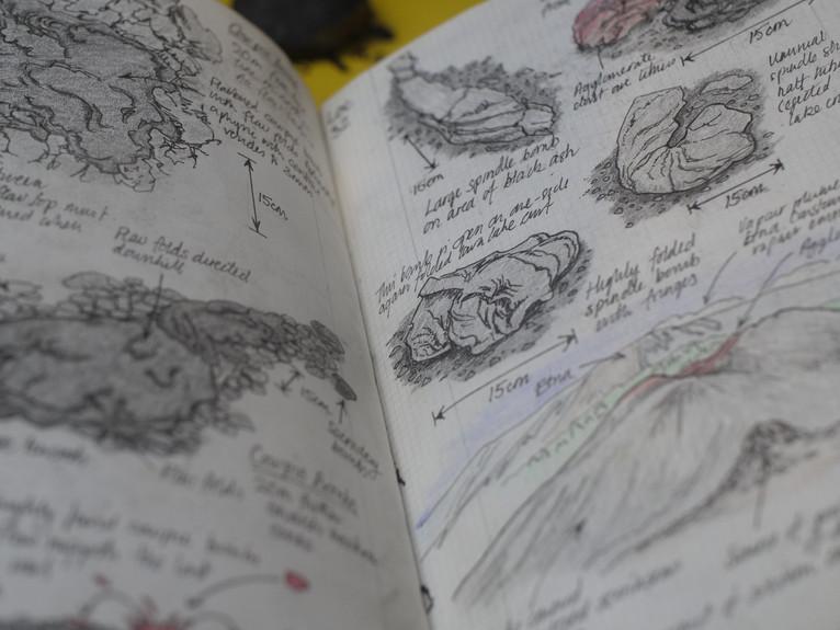 Field Sketches 4.JPG