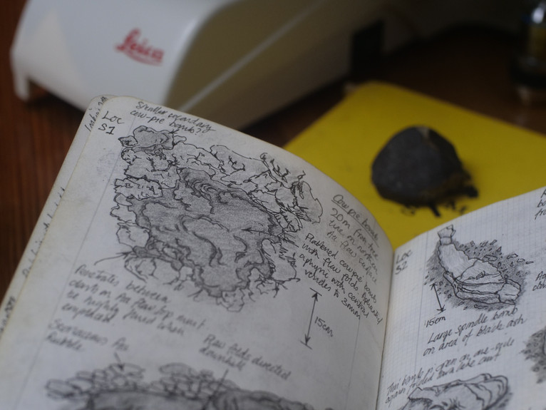 Field Sketches 1.JPG