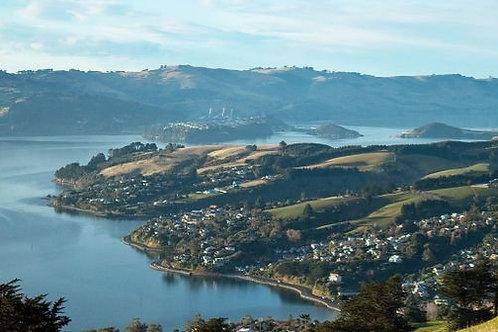 Multiples Otago Premium Membership - Dunedin