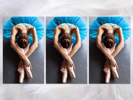 """""""Ballet Birds"""" Variation Workshop"""