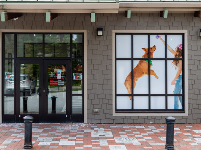 Window Signage and Entrance Signage