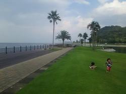 別府と大分の間にある田浦ビーチ