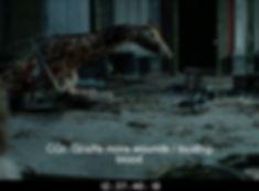 161_vis_color_08_12374010_Giraffe_inside