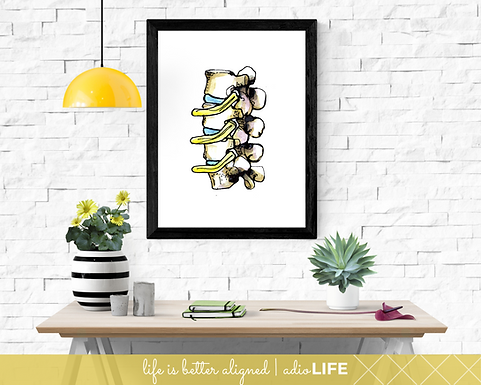 Spinal Wall Art - Chiropractic Poster (Normal)