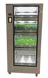 Microgreens System