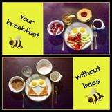 jpg breakfast without bees.jpg