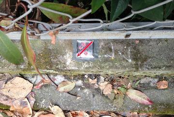 隣地所有者との立会いと境界標(杭)の設置