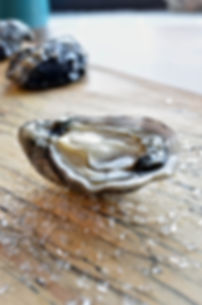 Oisrí oyster. True Irish oysters from the Wild Atlantic Way.