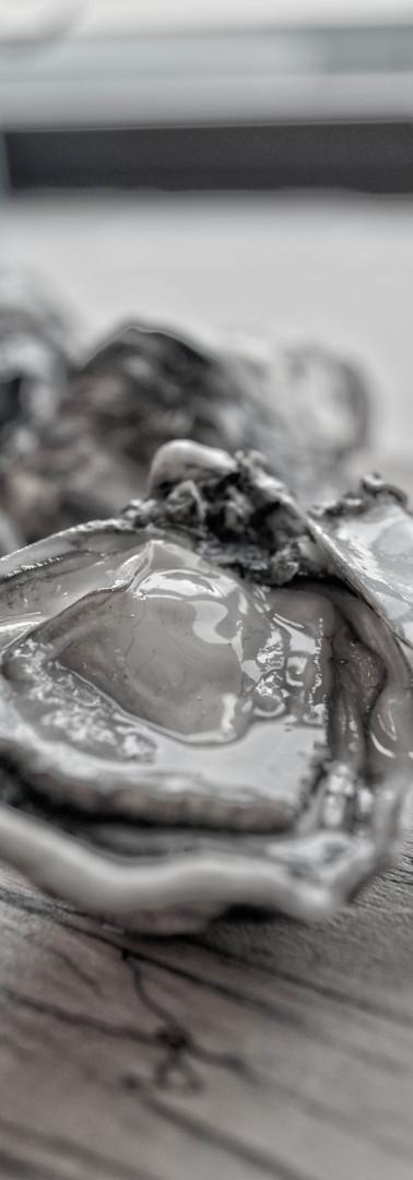 Oisrí oysters
