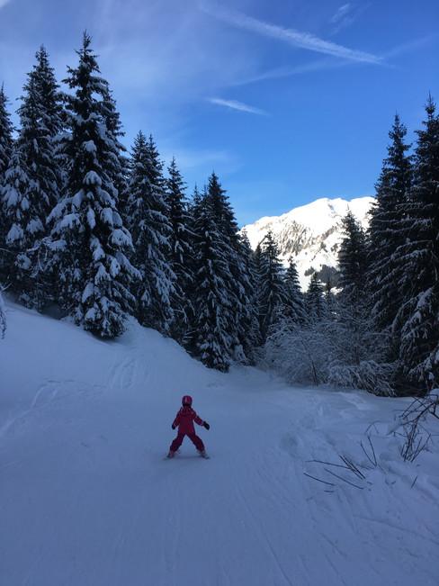 Skischule Jaun - Kurse Elternclub Schönberg