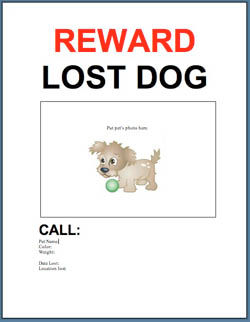 Lost-dog-flyer.jpg