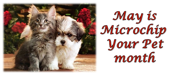 Microchip Your Pet month.PNG