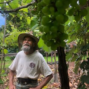 Gerry under grapes.jpeg