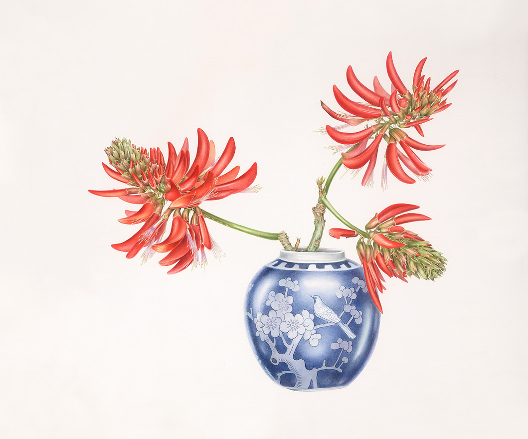 Coral tree and ginger jar