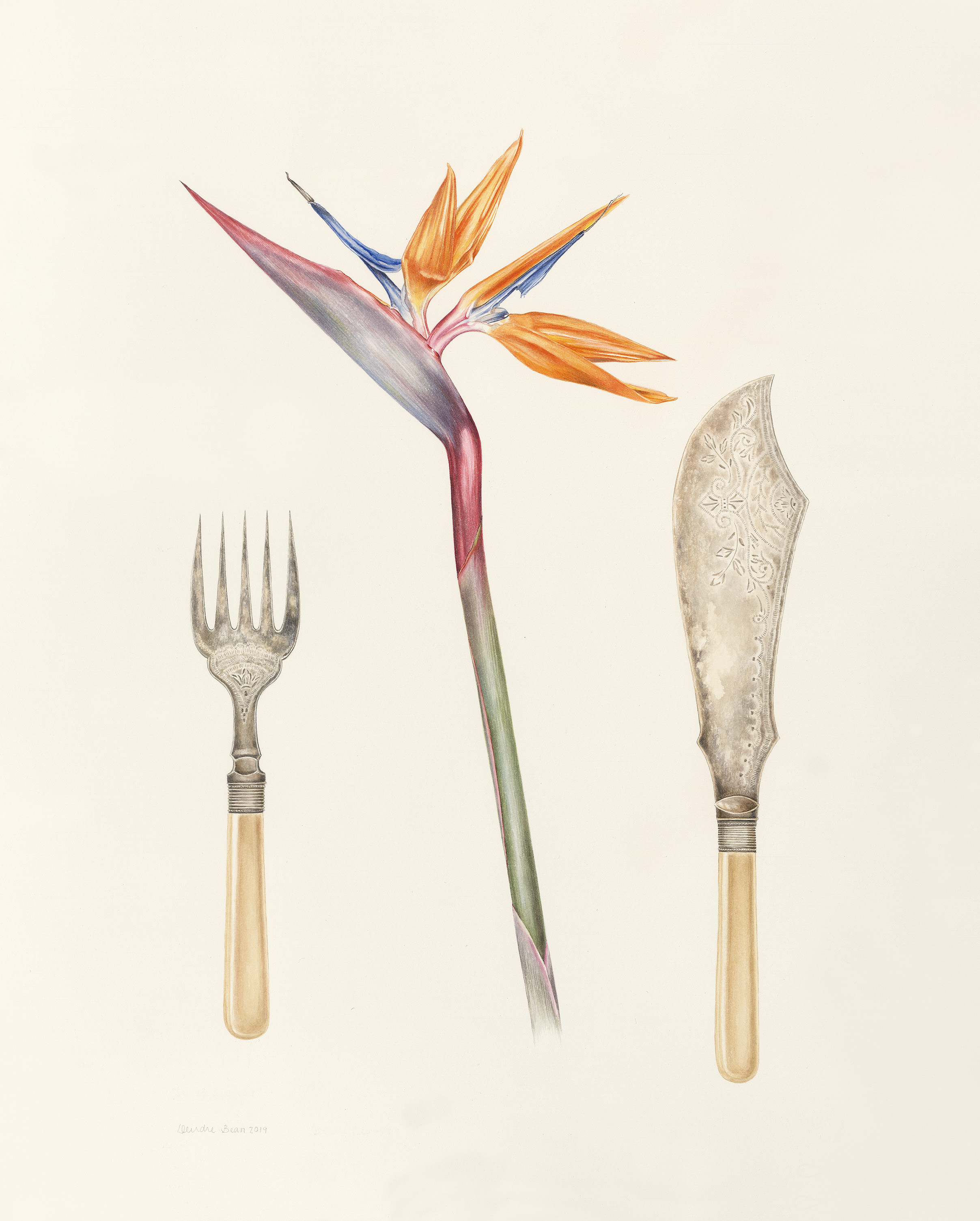 Strelitzia and fish servers
